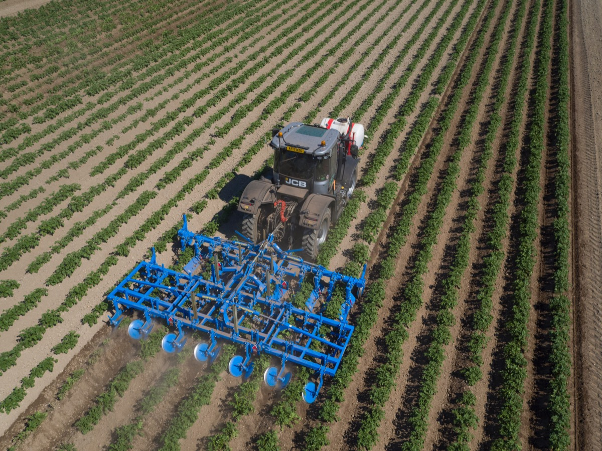 SRi 6-Row with Weeder